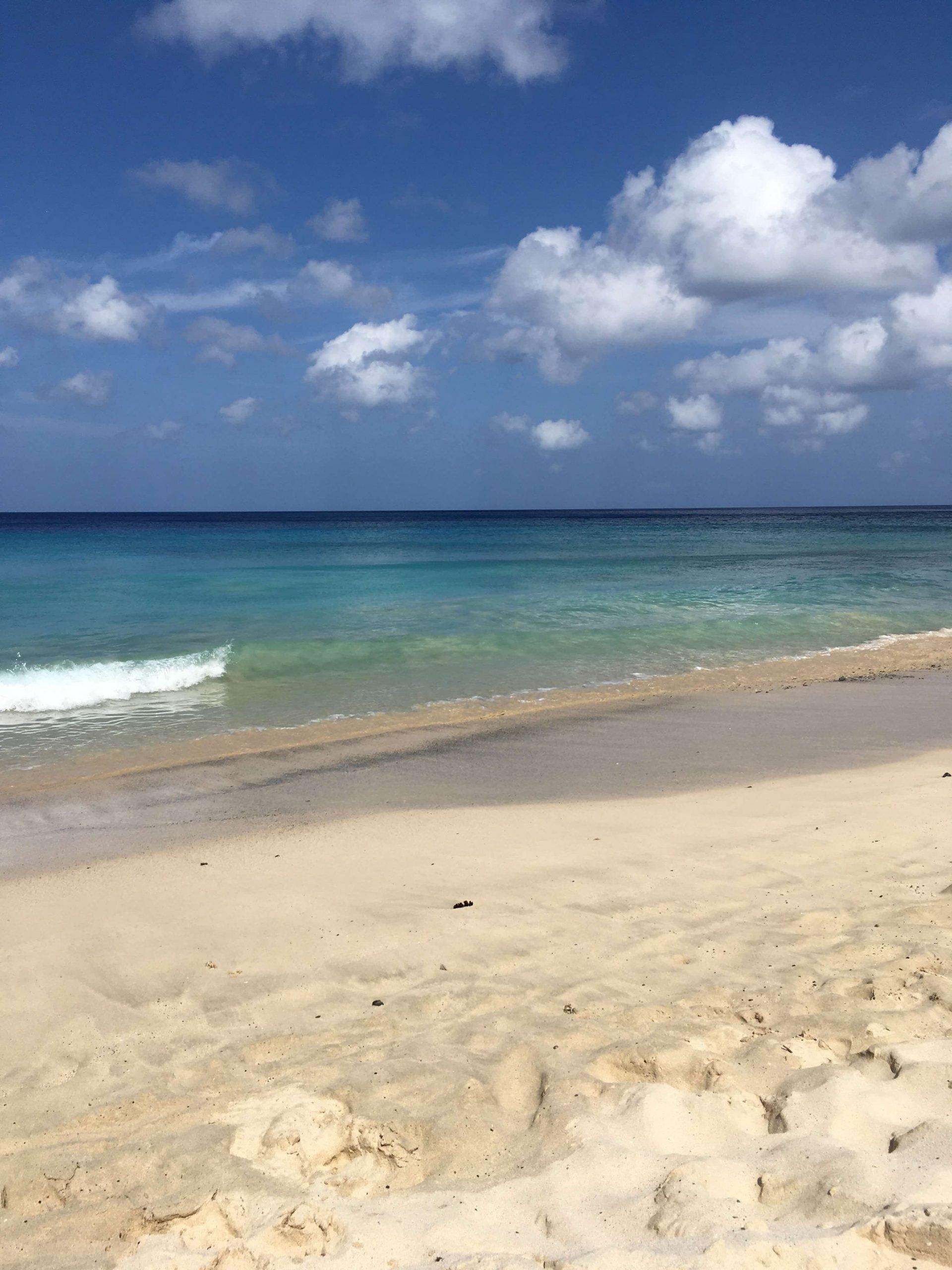 Davis Beach